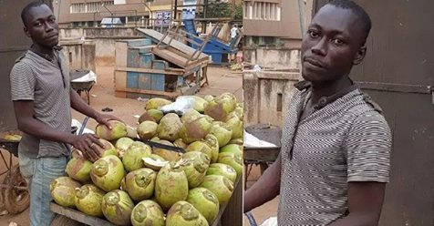 Meet The 27-year Old University Student That Sells Coconut For A Living