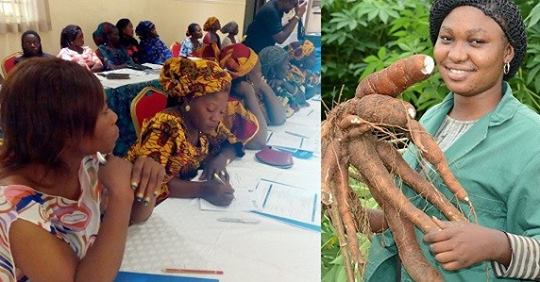 Man Narrates Unusual Thing Nigerian Women Farmers Did After They Were Asked For Their Account Numbers So They Can Be Paid