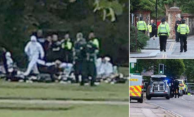 Three Killed, Several Injured As Man Goes On Stabbing Spree In British Town's Park