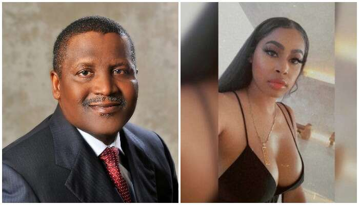 Dangote Asks Court To Issue Gag Order On Autumn Spikes