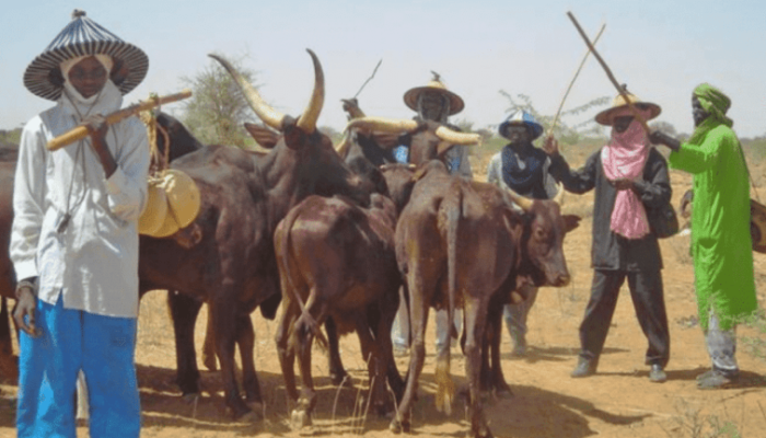 Miyetti Allah Lists 3 Conditions To Stop Farmers-Herders Clashes